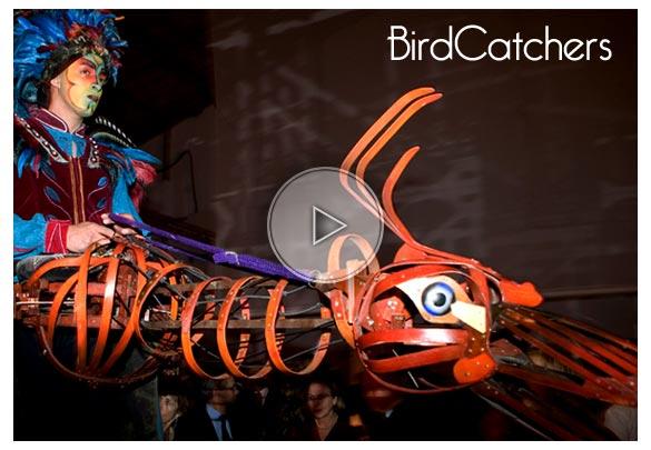 birdcatchers