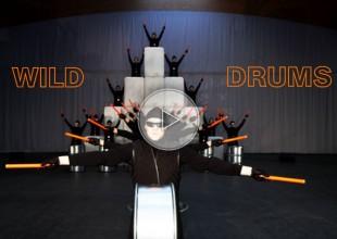 wild drummers, drums, drummer
