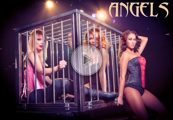 angels, the angels, magic beauties, ladies illusionists, sexy illusionists, sexy illusion, sexy magic, sexy magician